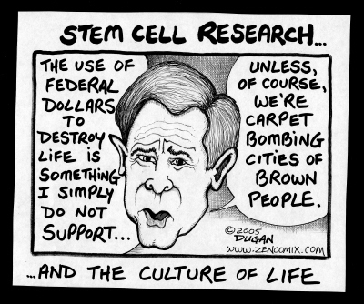 stem cell research outlines for a paper Outline on stemcell research paper  stem cell research has become a hot topic as the religious community has become outraged with.